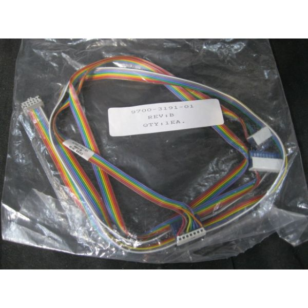 ASYST Technologies 9700-3191-01 HARNESS
