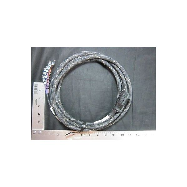 Applied Materials (AMAT) 0150-22607 CABLE ASSY, DC POWER DIST PCB WL ECP