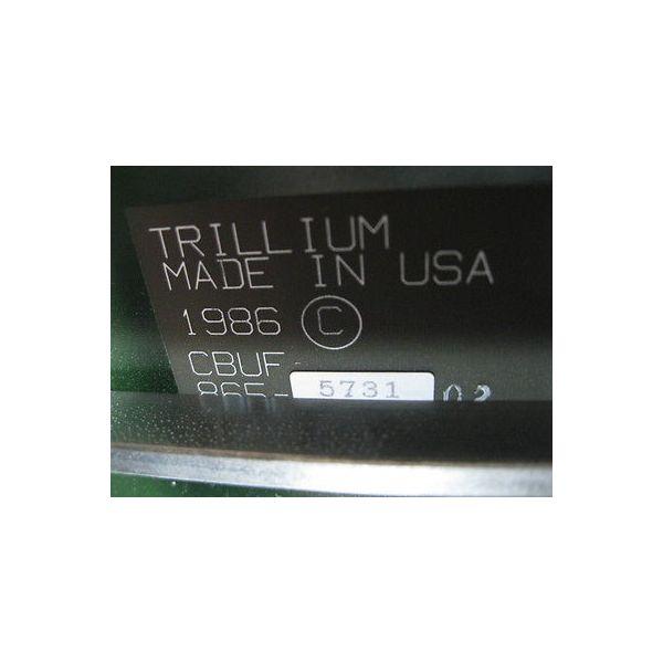 TRILLIUM 865-5731 TRILLIUM 865-5731-02 CBUF PCB